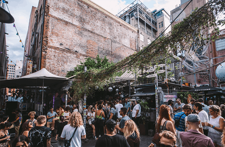People partying in a laneway at block party. Vines hang off a powerline.