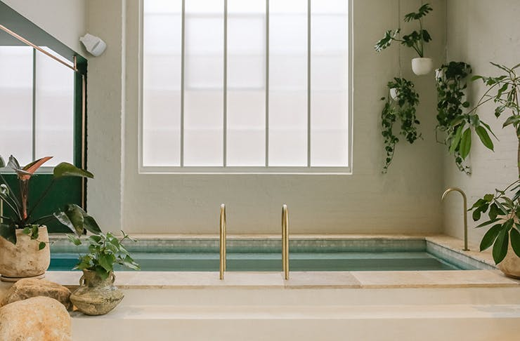 A lofty bathing pool with a large window behind it. Plants line the edge of the frame.