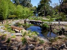 Zen Out At The Royal Botanical Garden's Sublime New Sensory Garden