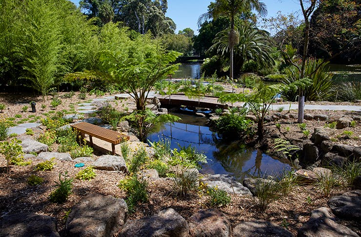 A stunning garden with a small lake in the middle. Palm trees line the horizon.