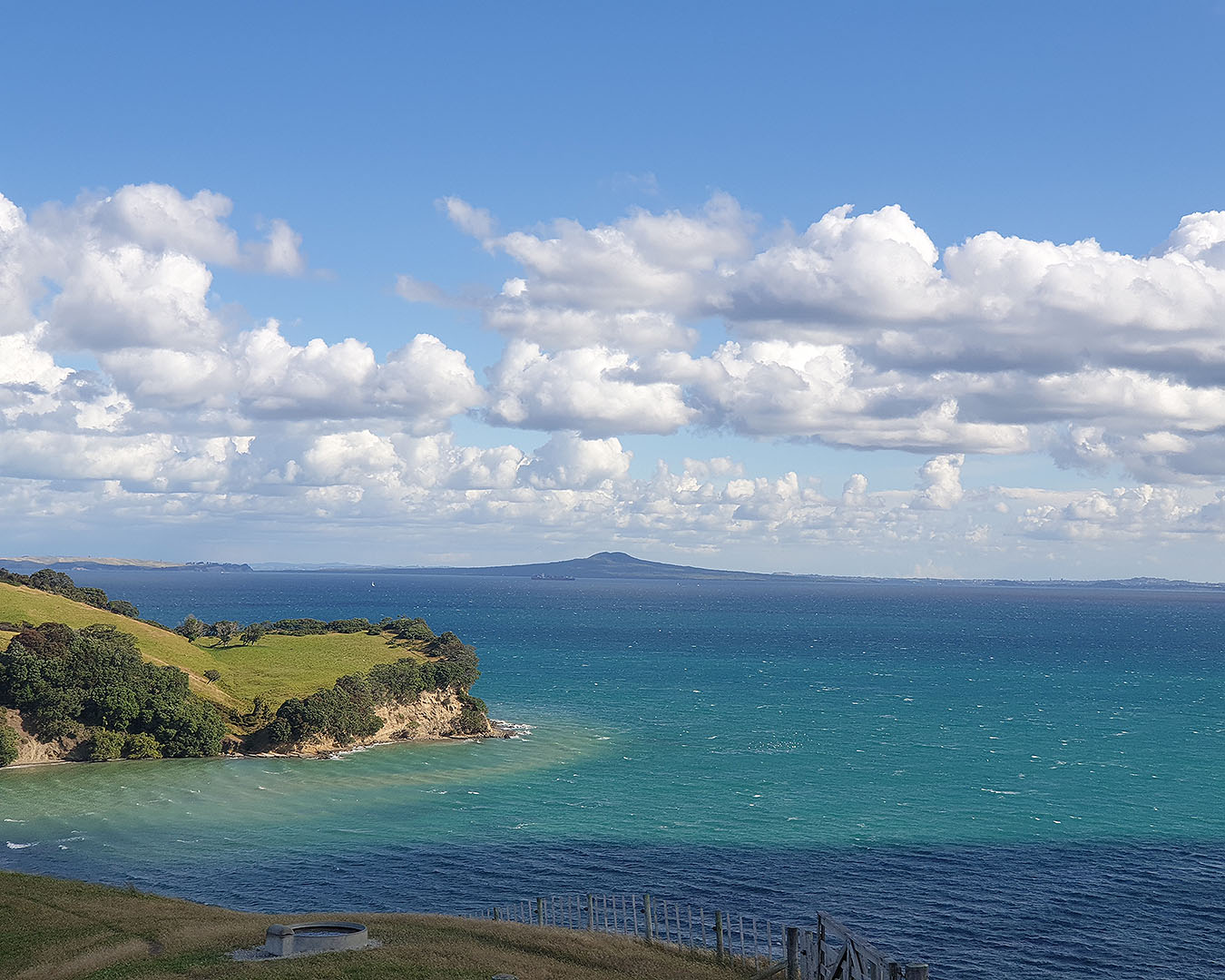 Impossibly blue sea at Shakespear regional park.