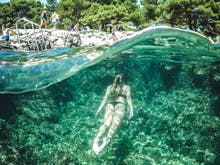Dive Into 6 Of The Best Places To Go Snorkeling Around Auckland