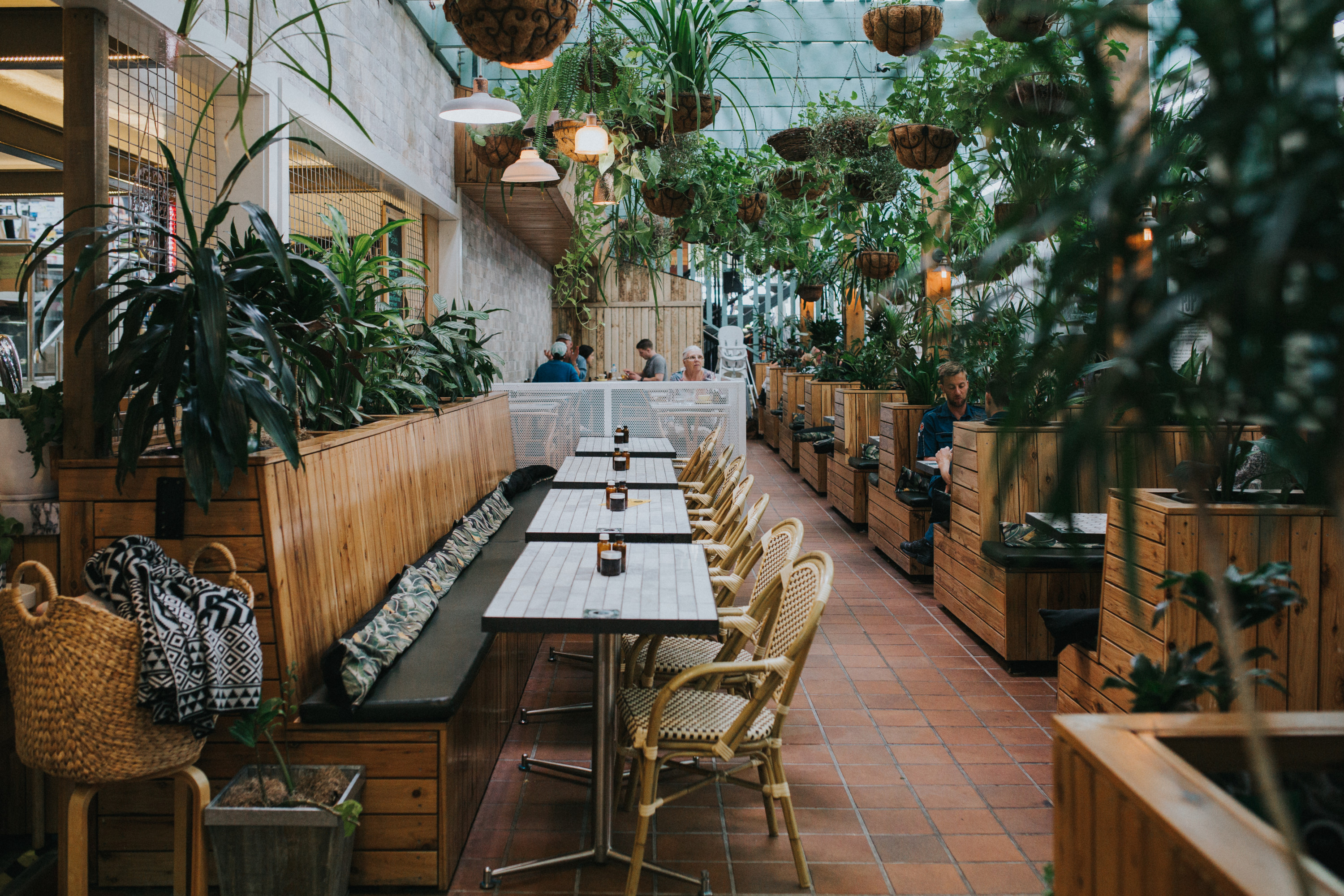 the lush interior of a cafe filled with greenery