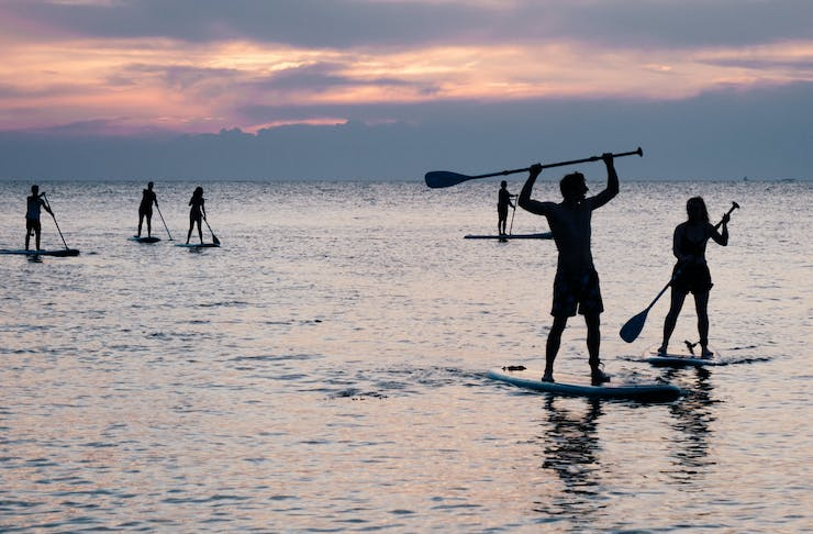 A group of stand up paddle boarders in the ocean at sunset.