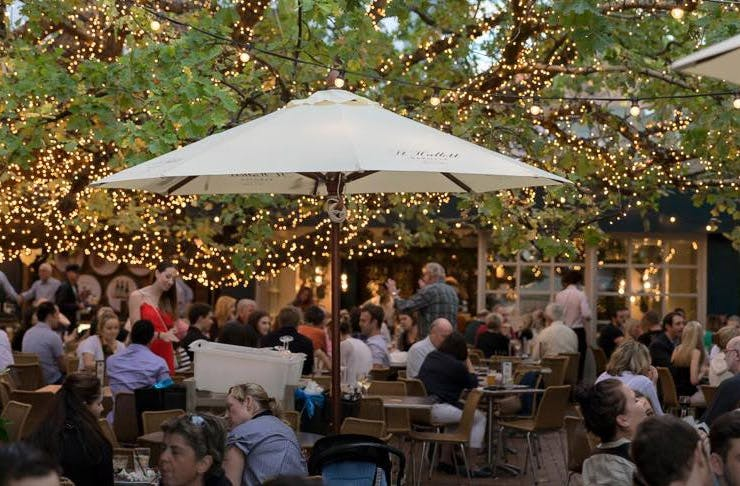 sydneys-best-beer-gardens-the-oaks