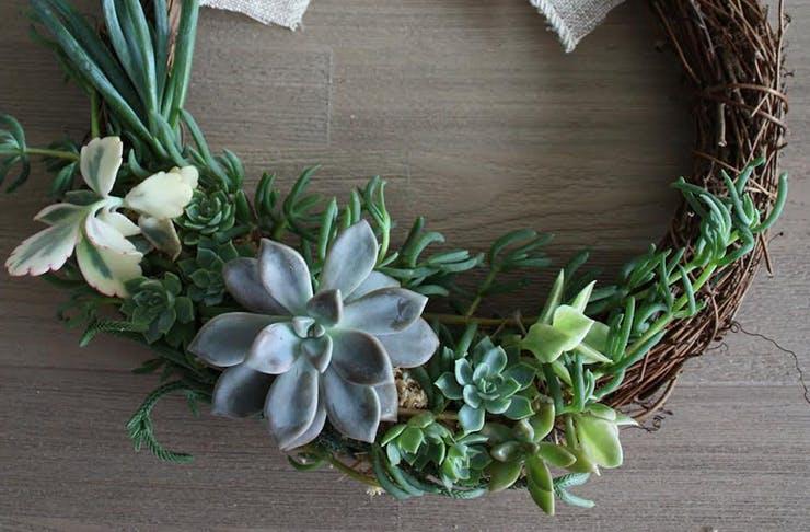 succulent-wreaths-brisbane-delivery