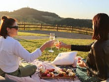Be Quick, This Stunning Hinterland Wedding Venue Has Opened Its Gates For Picnics