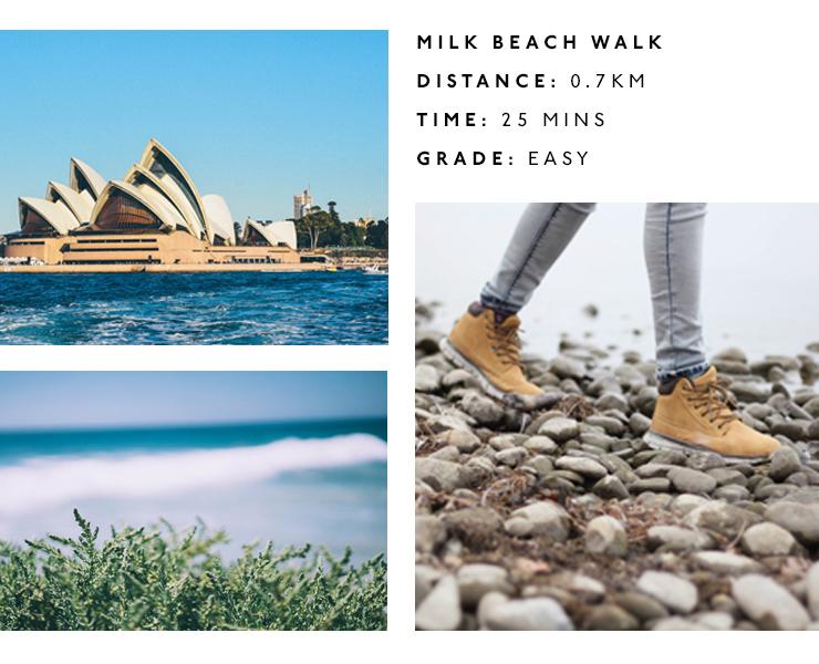 best walks near sydney