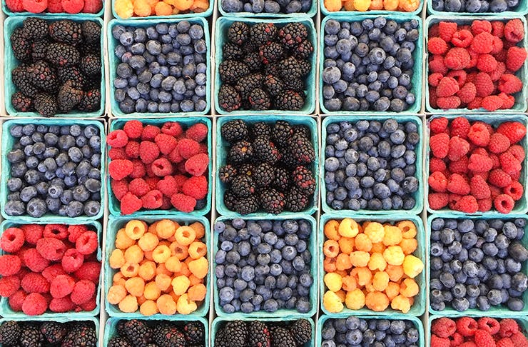 sydneys-best-health-food-stores