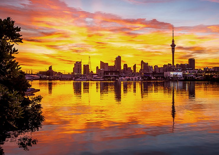 The Insider's Guide To The Best Of Auckland