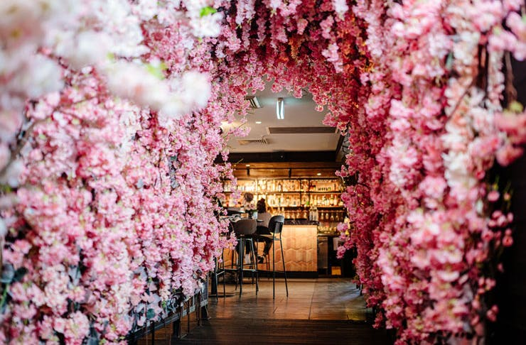 The cherry blossom installation at Sydney rooftop bar, The Rook.