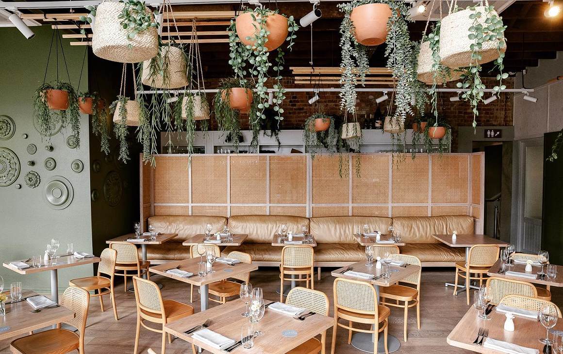 interior of restaurant with hanging plants