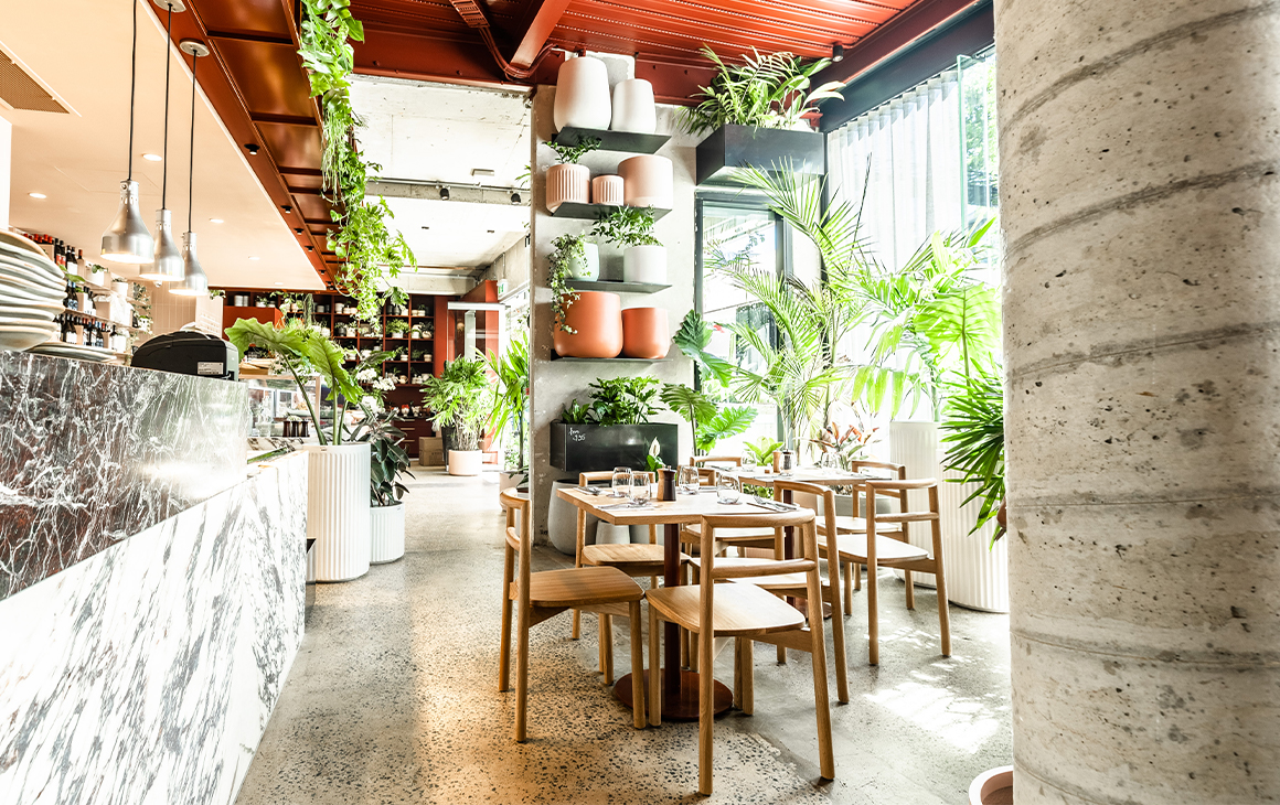 a cafe interior covered in plants