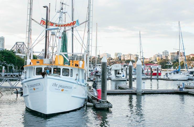 small prawn trawler in a marina