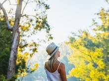 Start The Car, Here's Everything You Need To See And Do On Your Way To Dwellingup
