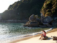 Discover The Best Things To Do In Nelson