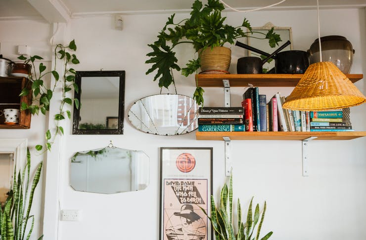 A cosy interior of a Maleny cafe, featuring a wall of mirrors and picture frames, shelves and hanging plants.