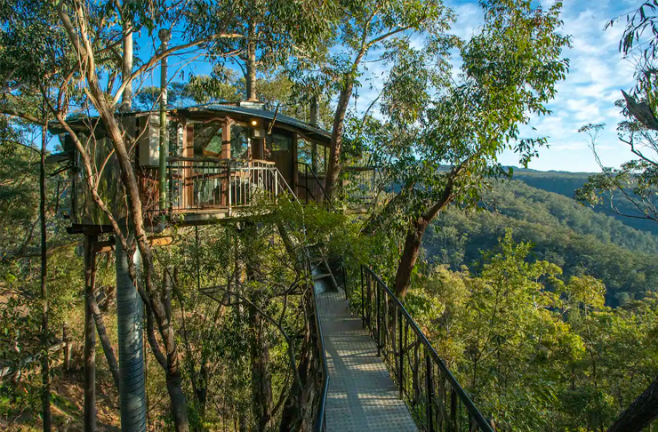 A treehouse perched in between gumtrees in the lush blue mountains.