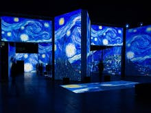 Get Excited, This Multi-Sensory Van Gogh Exhibition Has Officially Opened In Sydney