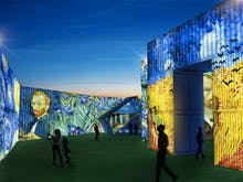 Book Your Tickets, This Multi-Sensory Van Gogh Exhibition On In Wellington