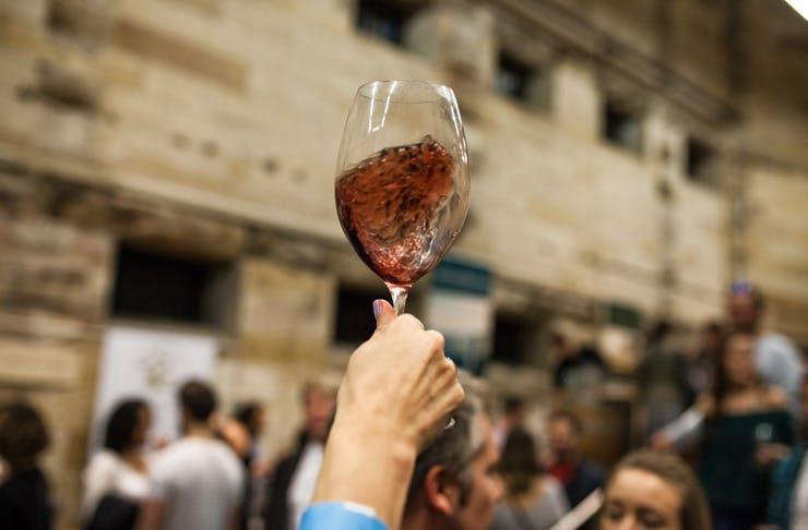 vin-diemen
