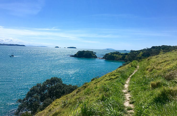 View over the head, things to do in Waiheke