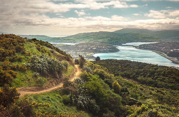 A stunning vista over Wellington