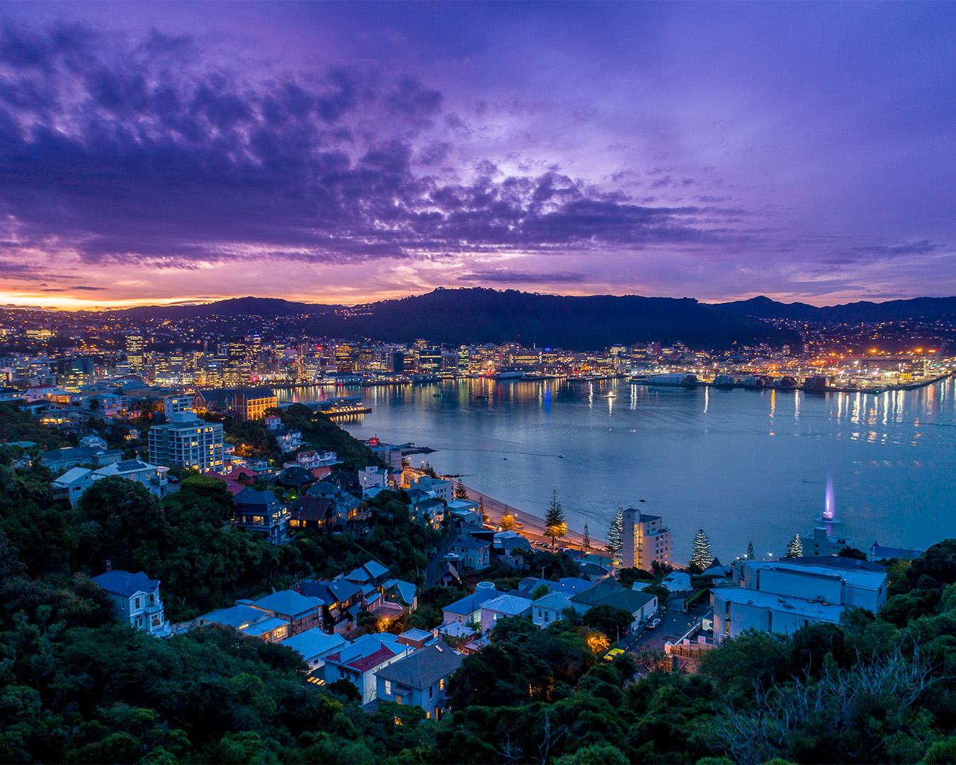 A view over Wellington at sunset.