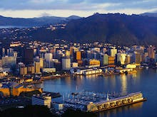 8 Of The Best Walks And Hikes In Wellington To Challenge Your Fitness