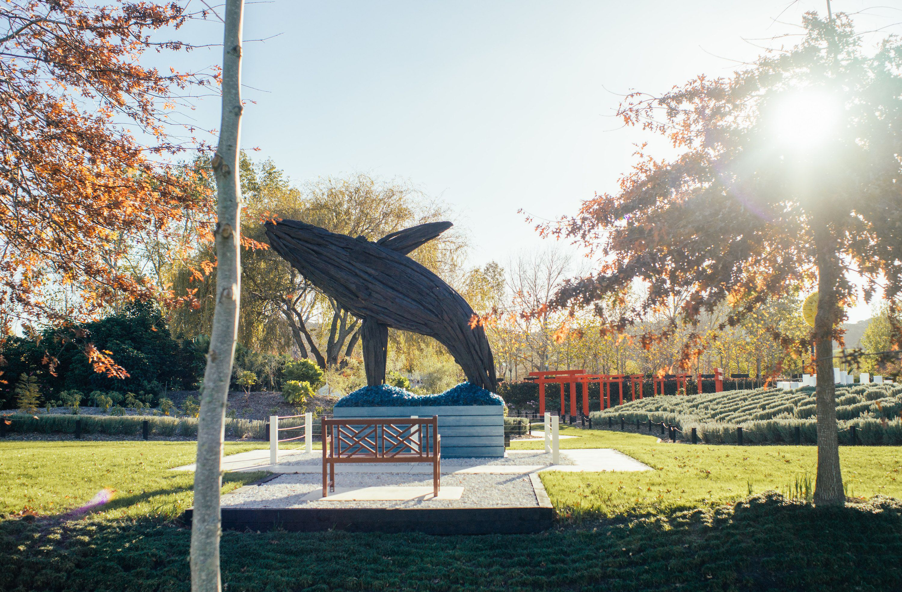 A dynamic sculpture of a whale in the outdoors