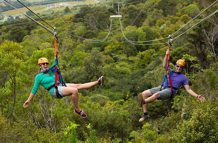What To Do In Auckland When You Think You've Done It All