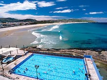 12 Of The Best Things To Do In Dunedin