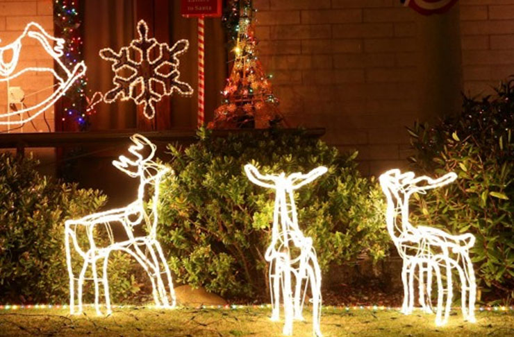 the best places to see christmas lights in auckland - Best Place For Christmas Decorations