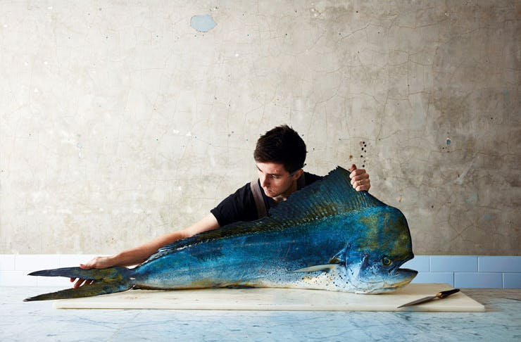 Sydney chef Josh Niland with a large blue fish. Josh Niland is known for his ethical, sustainable approach to fish.
