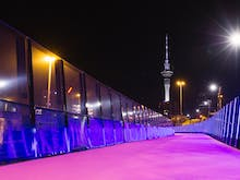 28 Reasons You'll Want To Move To Auckland