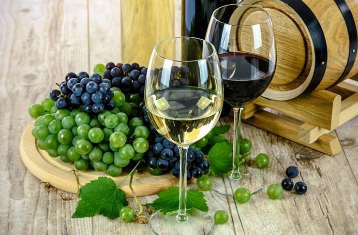 Winetopia Returns To Auckland