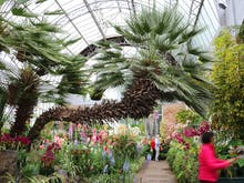 The Wintergardens' Nursery Is Getting A Modern Makeover!