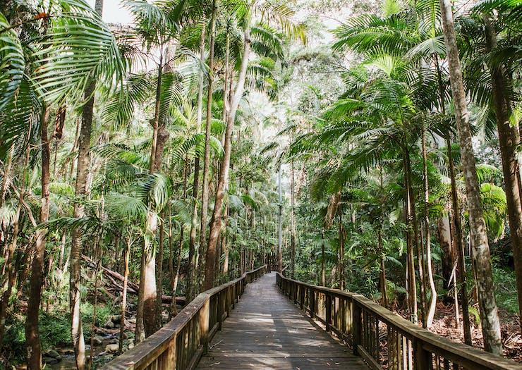 best-walks-on-the-sunshine-coast