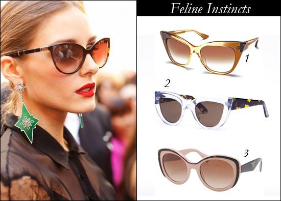 Optiko eyewear Brisbane, 1.74 eyewear, ellery graz cat eye sunglass