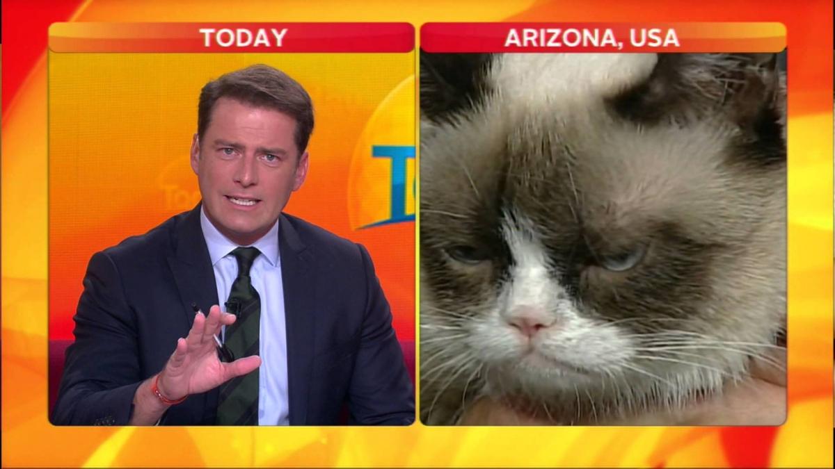 karl grumpy cat interview