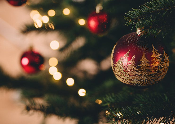 7 Of The Best Places To Buy A Real Christmas Tree In Auckland
