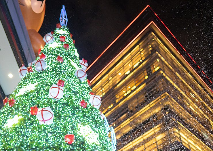 8 Epic Things To Do In Wellington This Christmastime