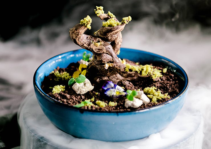 Yamagen Just Launched A Limited-Edition $200 Chocolate Bonsai Dessert