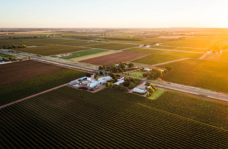 An aerial view of the Yarran Wines vineyard in the Riverina region of NSW at sunset.