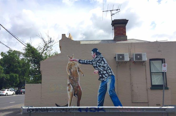 man fights kangaroo