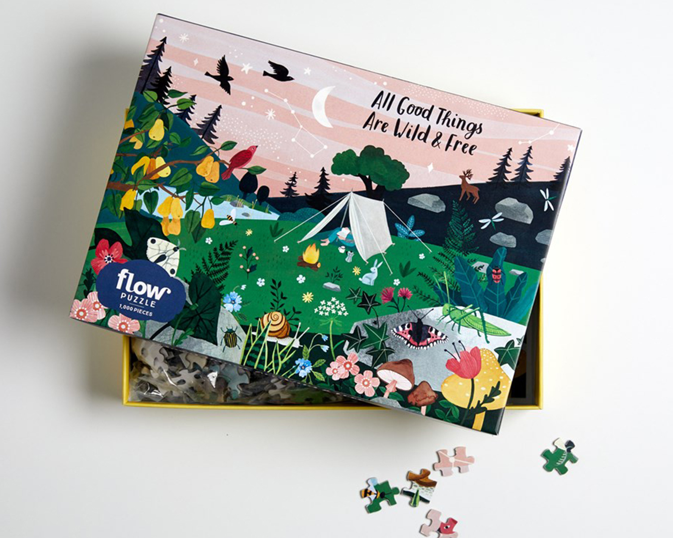 Puzzle depicting a campsite under a starry night sky on a box.