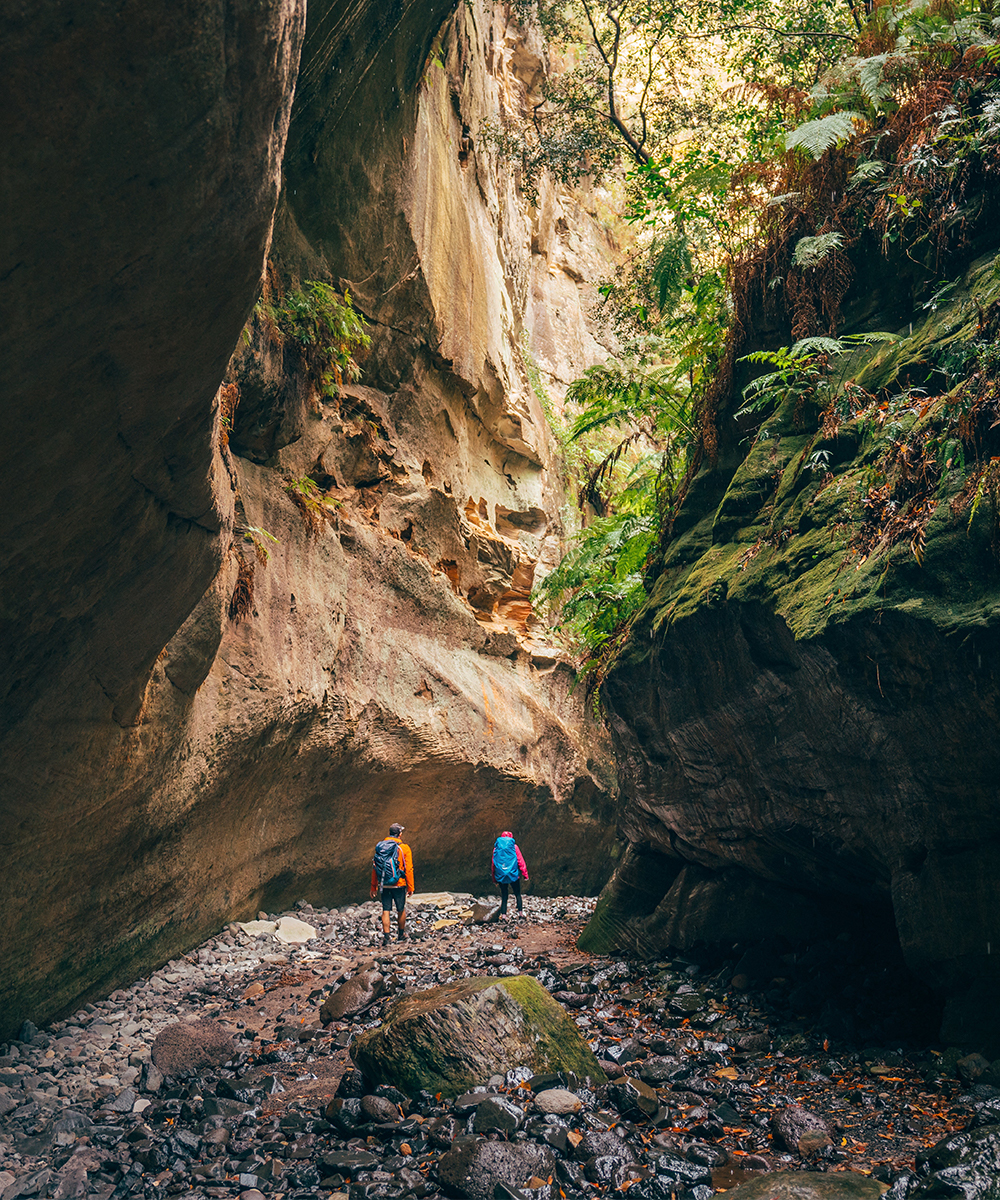 Two people walking through a Carnarvon Gorge