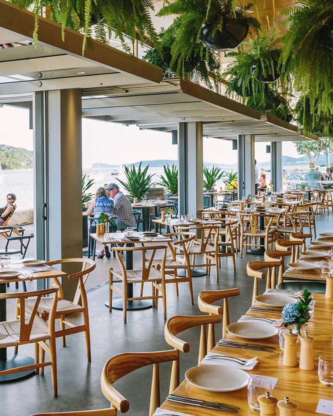 A very open dining space overlooking the water with greenery hanging from the roof and light timber furnishings.