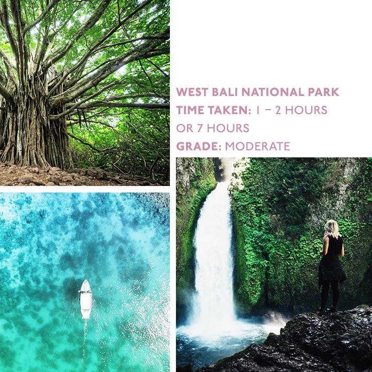Bali-hikes