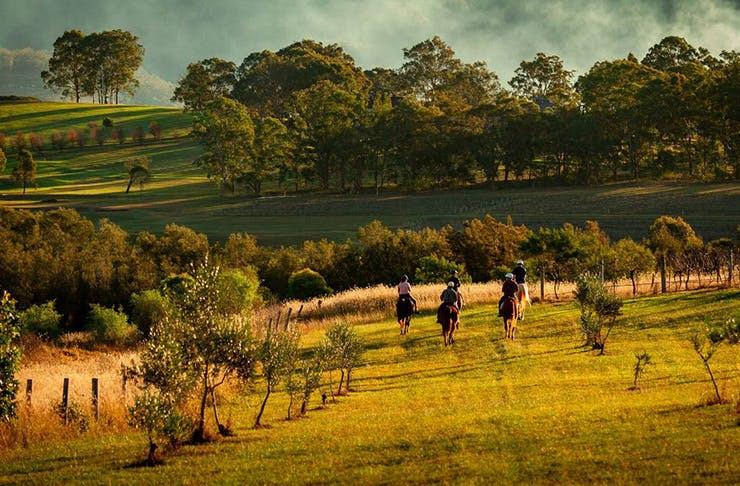 Murchessons Horseback Wine & Dine Tours Hunter Valley